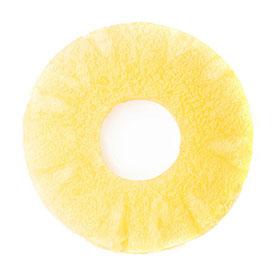 ananas-scheibe-02